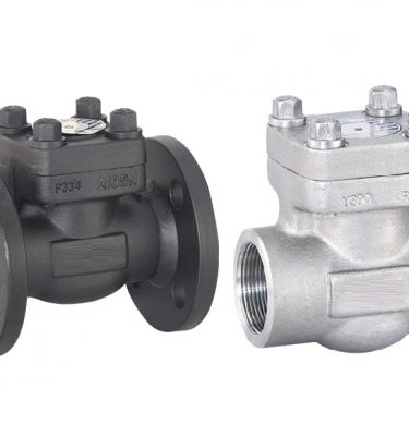 Forged CHECK Valve Luton UK UK